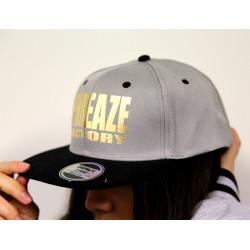 Grey/Black Metallic 2-Tone Cap