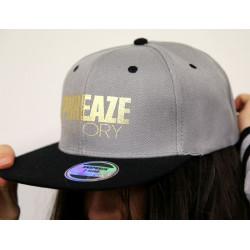 Grey/Black Skinny Metallic 2-Tone Cap